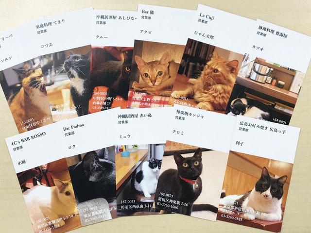 雑誌連動企画、都内の猫と酔える12の名店で「ねこ名刺」が配布されるニャ