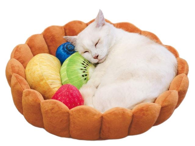 ニャンコを乗せて美味しくいただくフルーツタルト型の猫用クッション