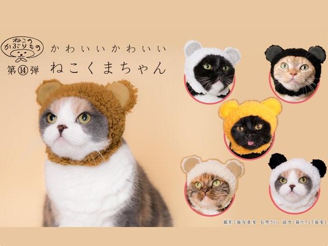 かわいい猫のかぶりものシリーズ最新作はパンダを含む6種類の「クマ」