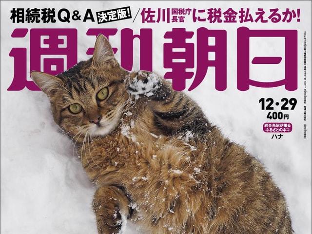 週刊朝日の2017年12月29日号は創刊以来初となるネコ特集ですニャ