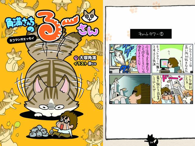 ゲーム雑誌編集者の人気猫ブログが書籍化「角満さんちのるーさん」