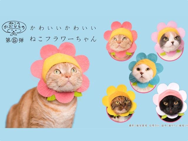かわいい猫のかぶりものシリーズ、2017年の最終作は「ねこフラワー」