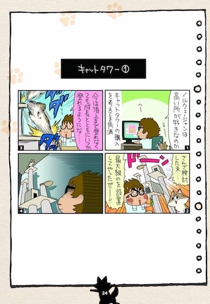 人気猫ブログ「角満さんちのるーさん」