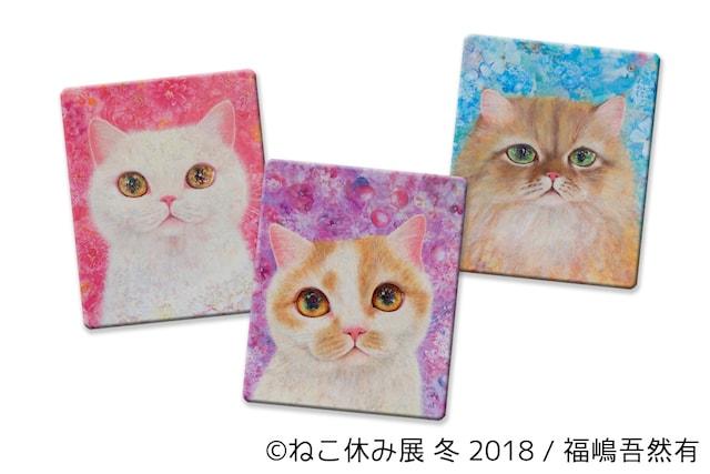 福嶋吾然有×スター猫のコラボグッズ