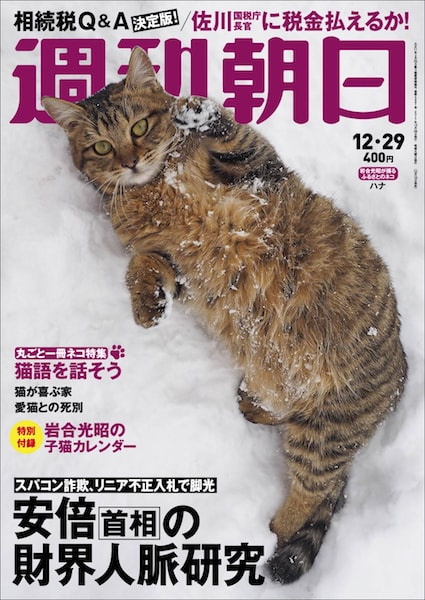 岩合光昭さんの猫写真が表紙「週刊朝日」2017年12月29日号