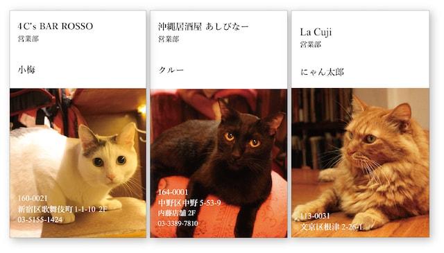 猫と呑めるお店の看板猫を名刺化した「ねこ名刺」