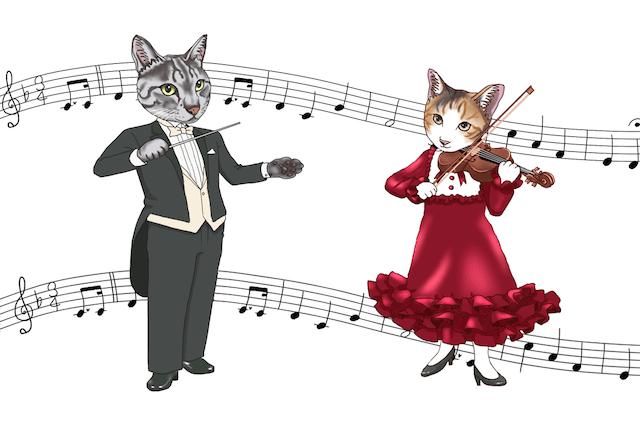 猫の音楽会・コンサート