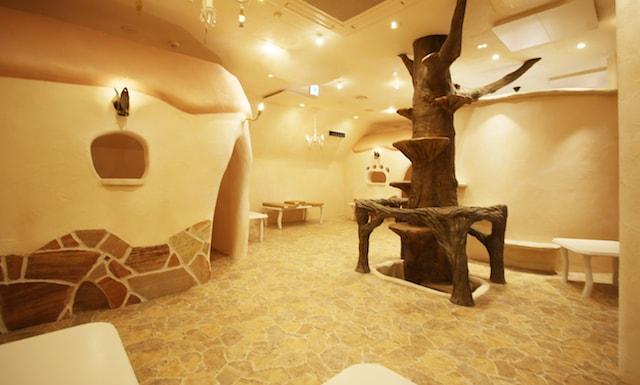 吉祥寺の猫カフェ「Cat Cafe てまりのおしろ」の店内イメージ