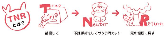 TNR活動のイメージ