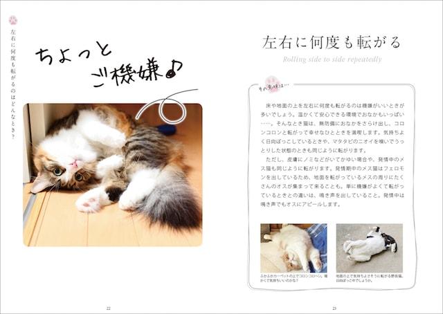 猫が左右に何度も転がる仕草を解説 by ねこ語会話帖