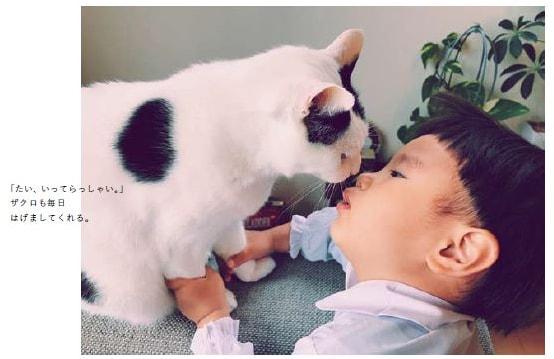 人間の男の子「たい」を励ます猫の「ザクロ」