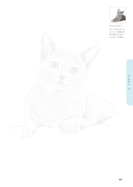 ロシアンブルー by 猫のなぞり絵