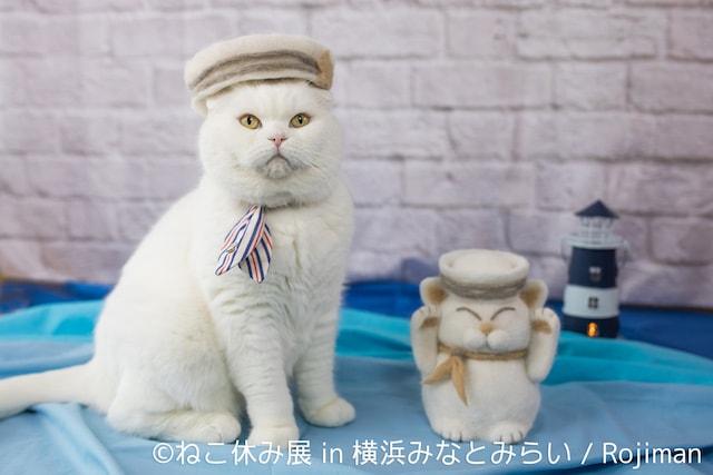 猫の抜け毛帽子 by rojiman