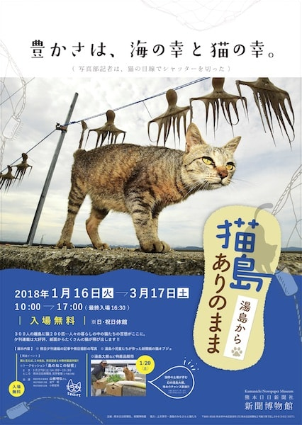 熊本の新聞博物館で開催されている展示会「猫島ありのまま 湯島から」