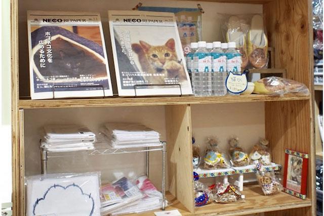 大阪ネコビル・ネコリパブリック大阪心斎橋店2Fのネコ市場
