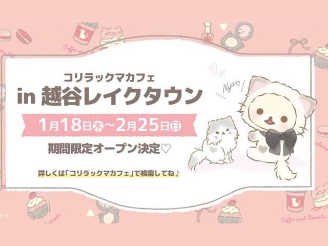 コリラックマ×子猫「コリラックマキャット」のカフェがレイクタウンに登場