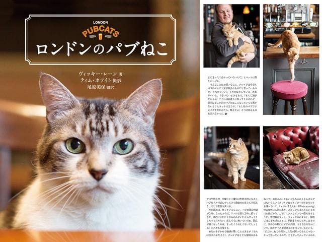 パブの名物猫たちを集めた写真集&パブガイド「ロンドンのパブねこ」