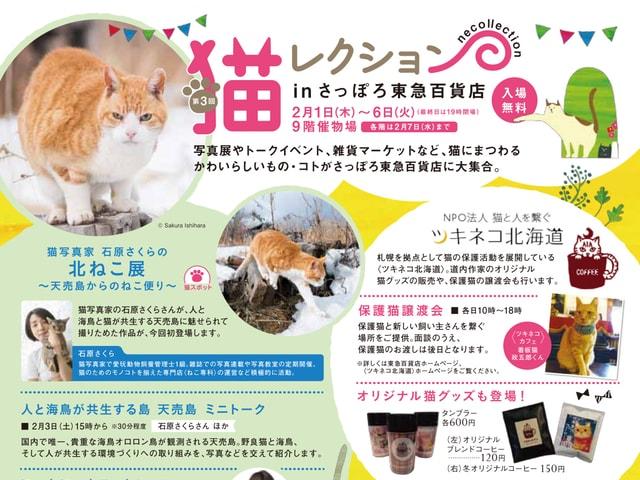 さっぽろ東急百貨店が全館ネコまみれ!第3回 猫レクション2/1〜開催