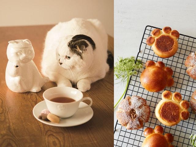 アフタヌーンティー × Cat's ISSUEの猫アイテム第4弾が登場