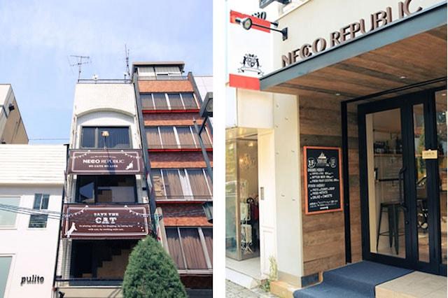 「大阪ネコビル」ネコリパブリック大阪心斎橋店の外観