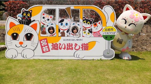 猫塚公園前バス停にある追い出し猫の顔出しパネル