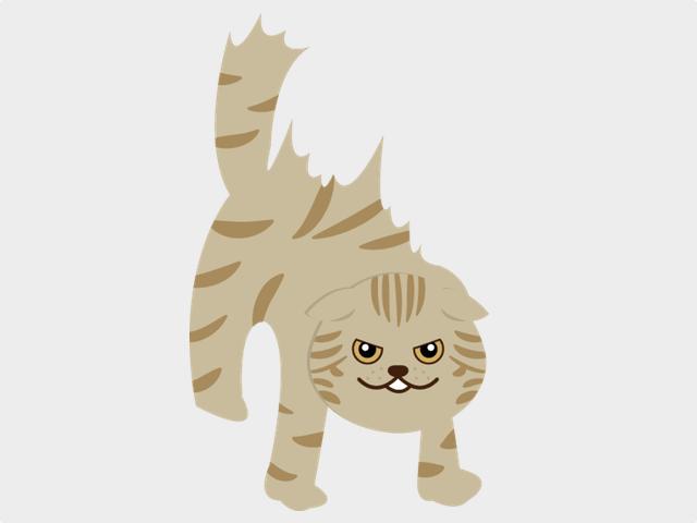 しっぽの毛が逆立つ猫のイメージイラスト ac