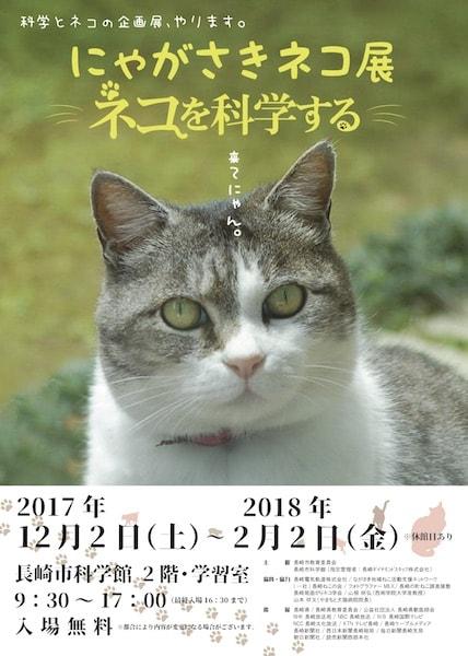 長崎市科学館(別名スターシップ)の企画展、「にゃがさきネコ展 ~ネコを科学する~」