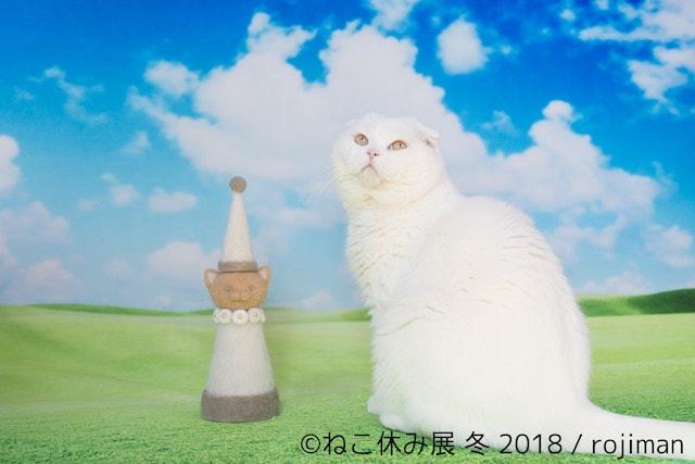 rojimanの猫毛で作った新作「ねこ休みタワー」(白猫)