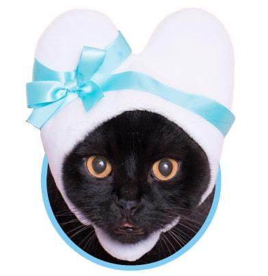 猫用の「ハート」のかぶりもの、ホワイトカラー