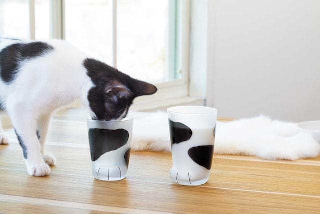 猫の手をモチーフにしたグラス(白黒ぶちねこ柄)