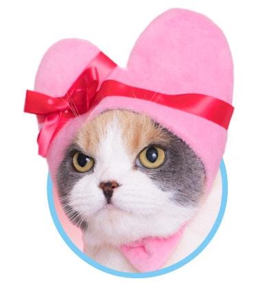 猫用の「ハート」のかぶりもの、ピンクカラー