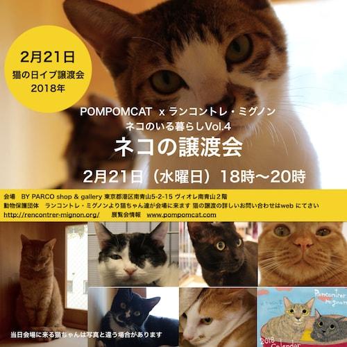 猫の譲渡会 by ランコントレ・ミグノン