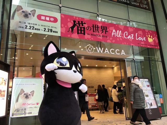 WACCA池袋で開催される猫イベント「池袋キャッツフェスタ」