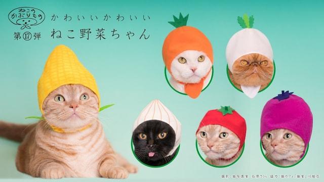 キタンクラブのカプセルトイ、猫用のかぶりもの「かわいい かわいい ねこ野菜ちゃん」