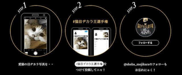 猫目ヂカラ王選手権の応募方法