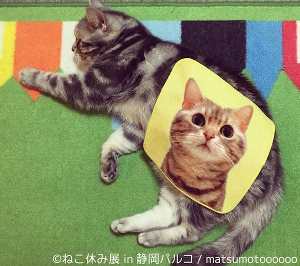 猫タオル by matsumotoooooo