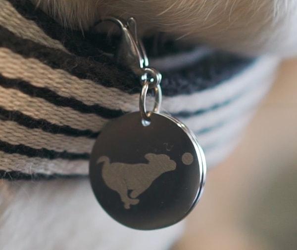 多頭飼いの猫でも別々に体重測定ができる別売りの識別チップ