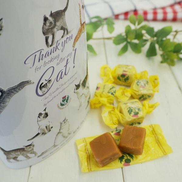 ガーディナー バニラファッジ キャット缶 by カルディーコーヒーファーム