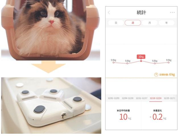 ケージやキャリーに入るだけで猫の体重測定ができる「くるみスケール 」