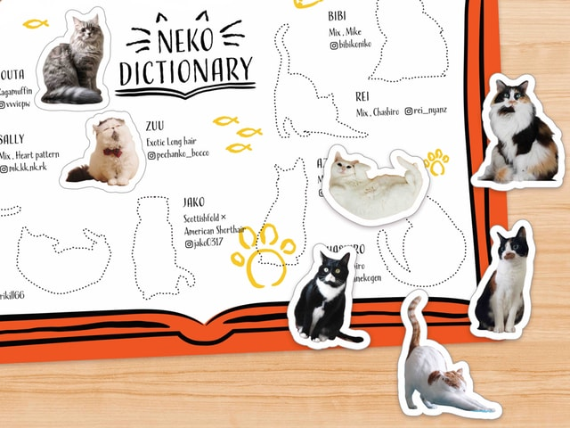 渋谷ヒカリエで猫の日を記念した「ShinQs ネコフェス」が開催2/15〜