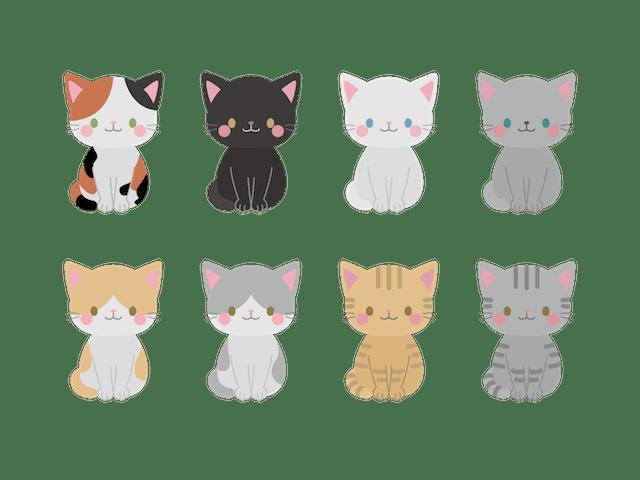 猫の種類・柄イメージイラスト