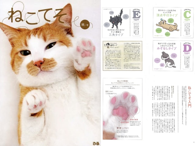 猫の肉球を5つのタイプに分類!猫の手相が分かる本「ねこてそ」