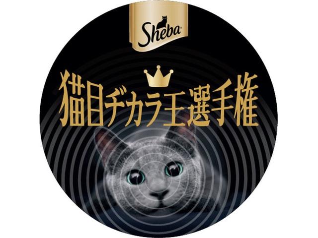 愛猫の眼力を競う「猫の目ヂカラ選手権」by シーバ(sheba)