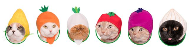 猫用のかぶりもの「かわいい かわいい ねこ野菜ちゃん」全6種類