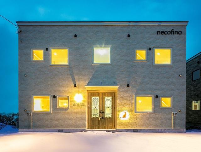 デザイナーズ賃貸「necofino(ネコフィーノ)」の外観