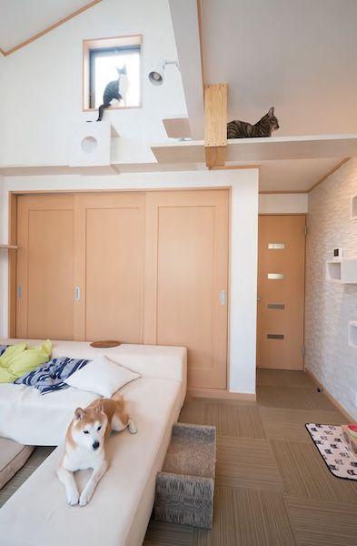 セミナー1、犬と猫と「三楽暮」 住まいのデザイン