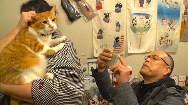 田中要次さんの神楽坂ネコ巡り