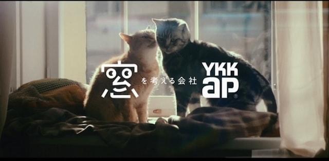猫のテレビCM YKK
