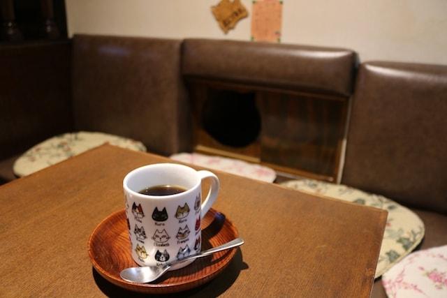 谷根千エリアの猫がいる喫茶店