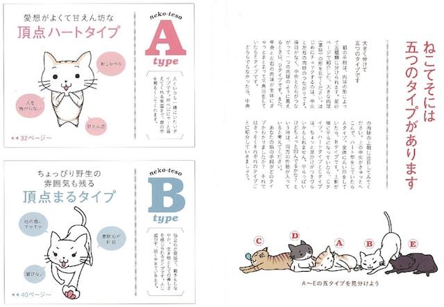 猫の手相占い タイプA〜B解説ページ